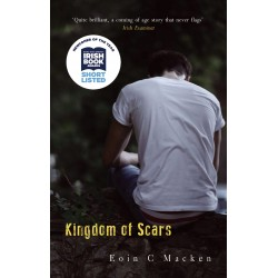 8. Kingdom of Scars - Eoin C Macken